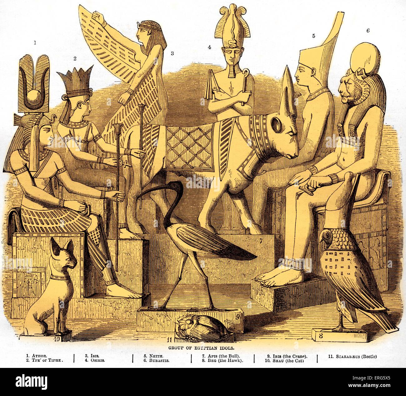 Group Egypt 70