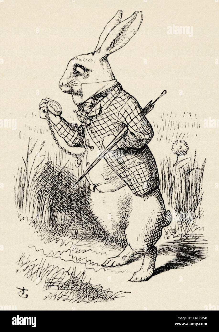 alice in wonderland the white rabbit looks at his pocket