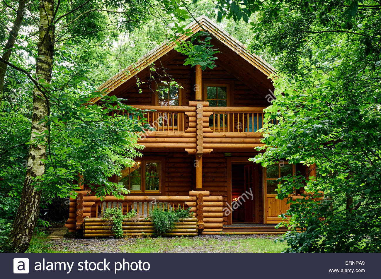 A wooden log cabin in the woods in bryseincyn in anglesey for Wood cabin homes