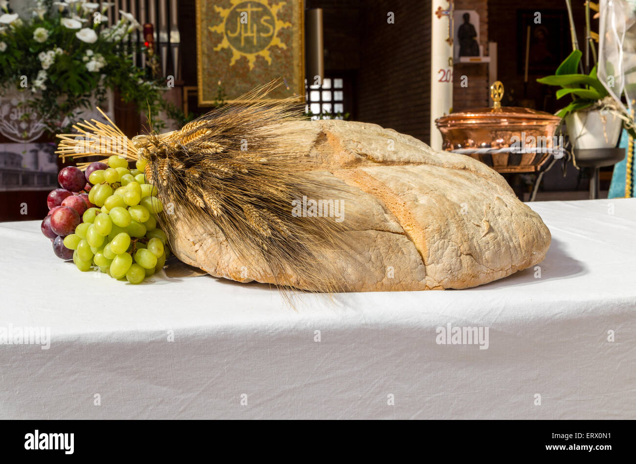 Bread grapes and wheat as a symbol of christian communion in a bread grapes and wheat as a symbol of christian communion in a catholic church buycottarizona Choice Image