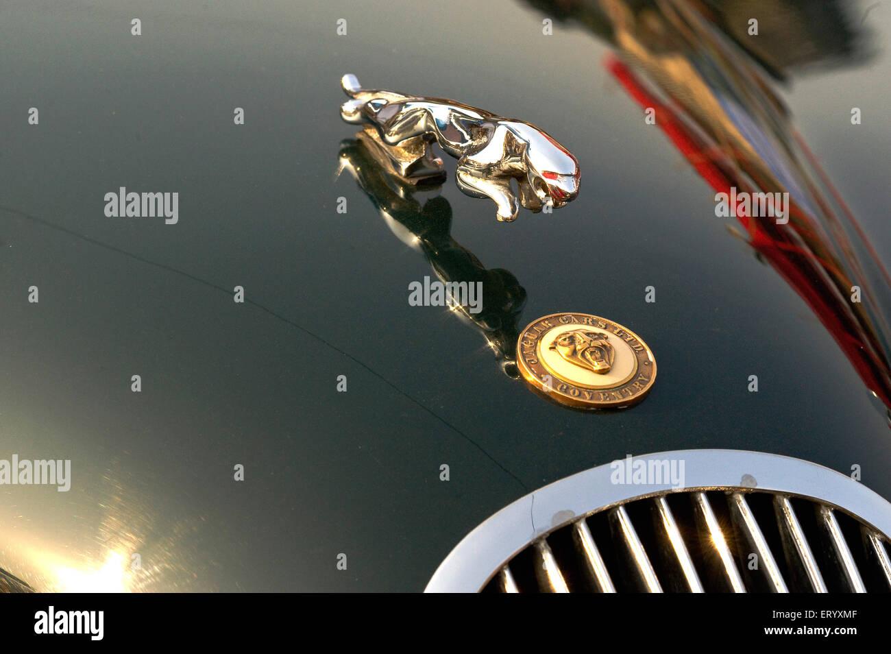 Jaguar car logo stock photo 136783265 alamy jaguar logo on bonnet of vintage car 1962 india stock photo buycottarizona