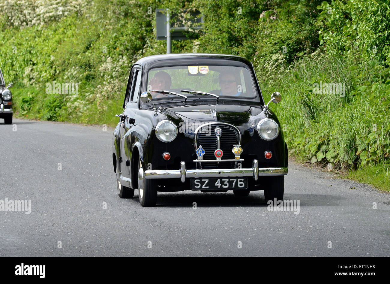 austin a35 black classic small british saloon car 1957 4 door on stock photo royalty free. Black Bedroom Furniture Sets. Home Design Ideas