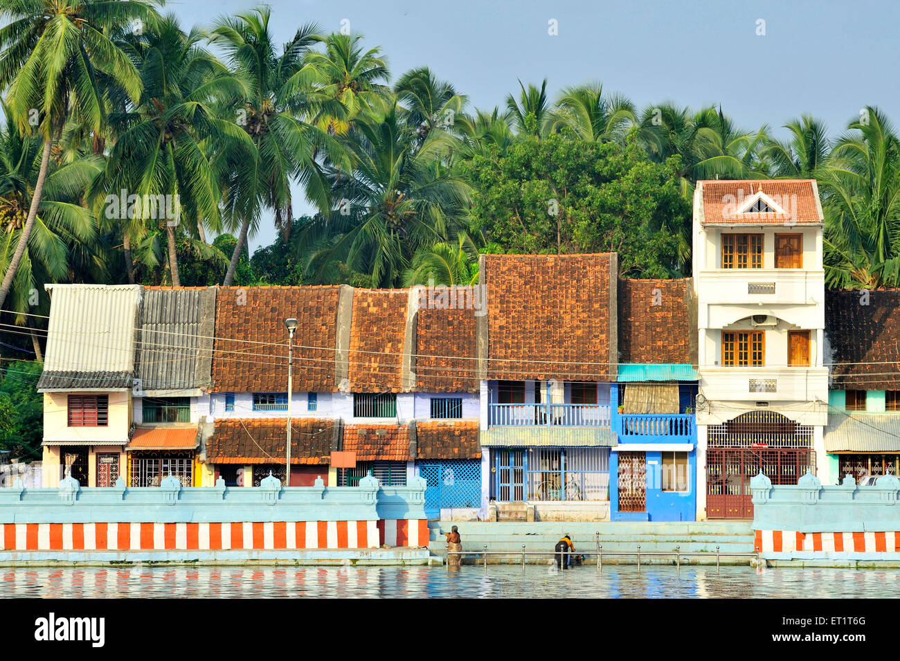 Small houses near tank in suchindram at tamil nadu india asia stock image