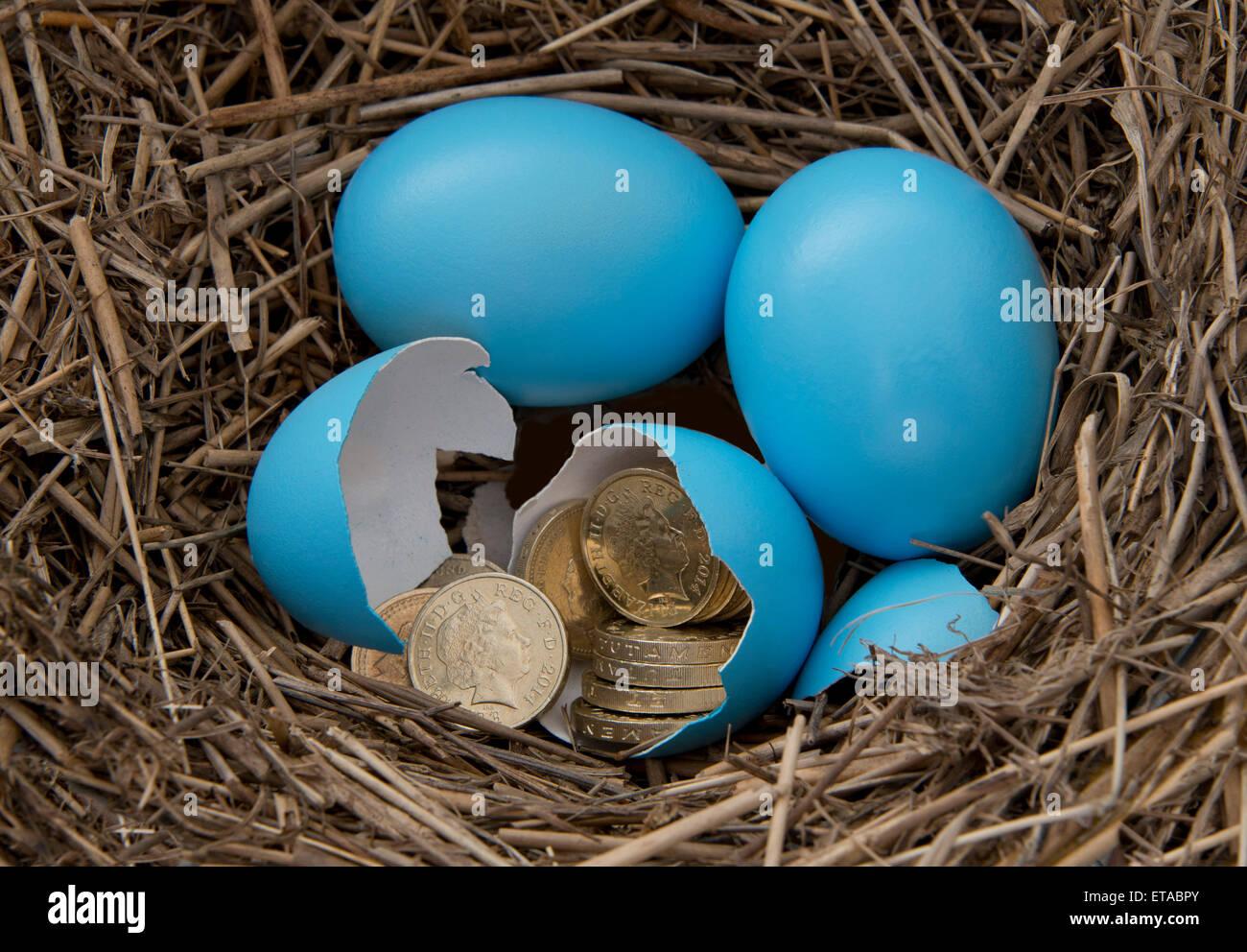 hatching dinosaur egg instructions