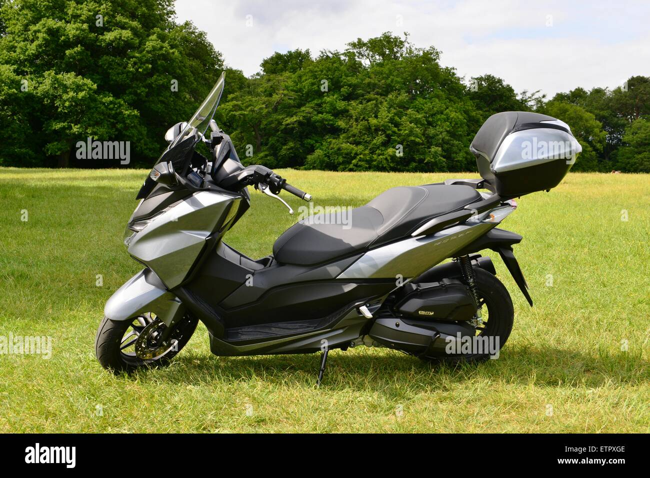 honda forza 125 scooter in a field at boxhill in dorking surrey stock photo royalty free image. Black Bedroom Furniture Sets. Home Design Ideas
