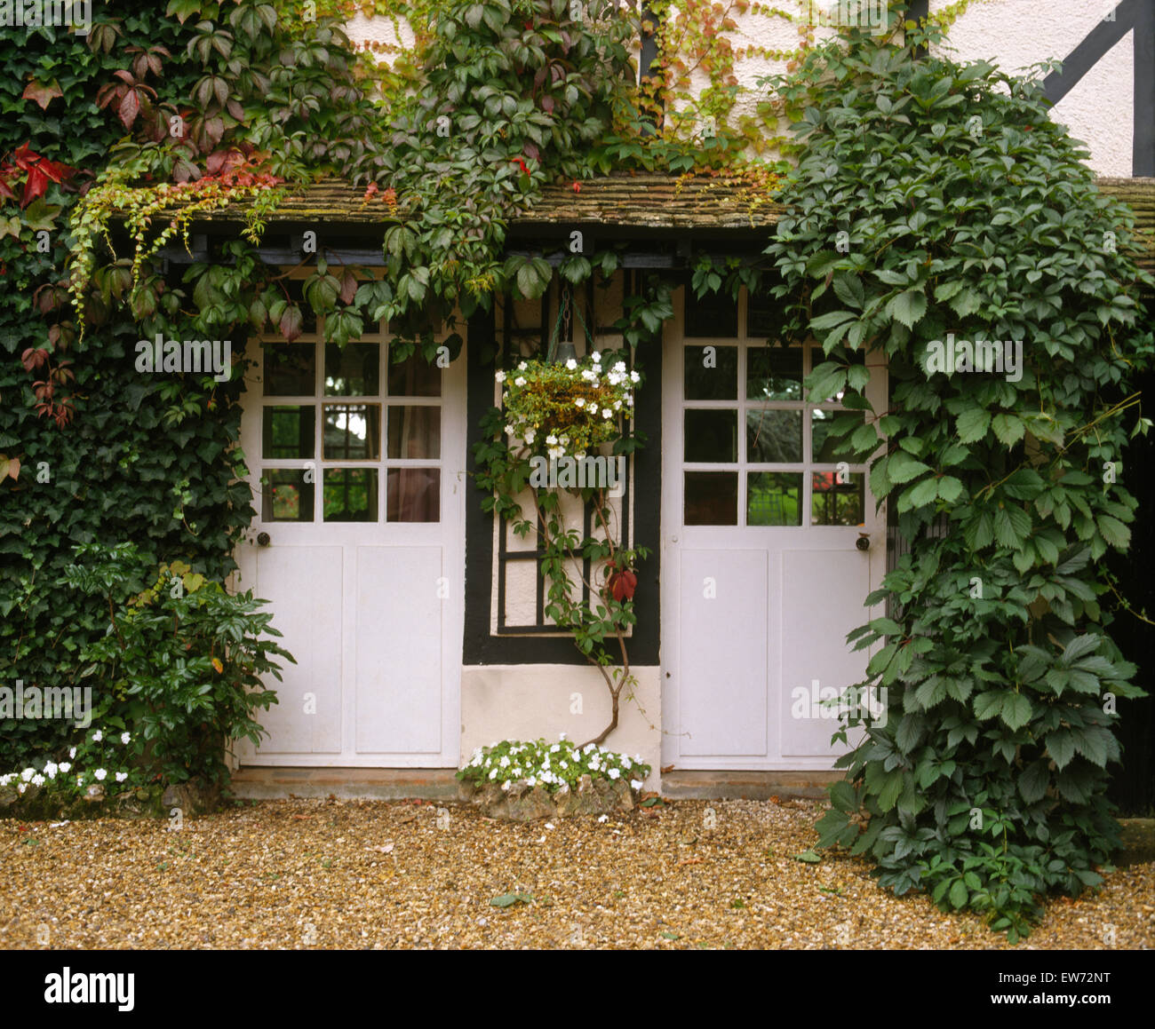 French cottage exterior - Exterior Of White French Cottage With Green Virginia Creeper And Half Glazed White Doors