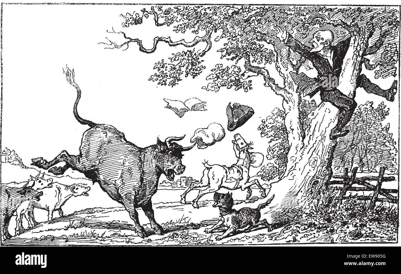 Doctor Syntax Being Chased By A Bull Thomas Rowlandson Vintage Engraved Illustration Le Magasin Pittoresque