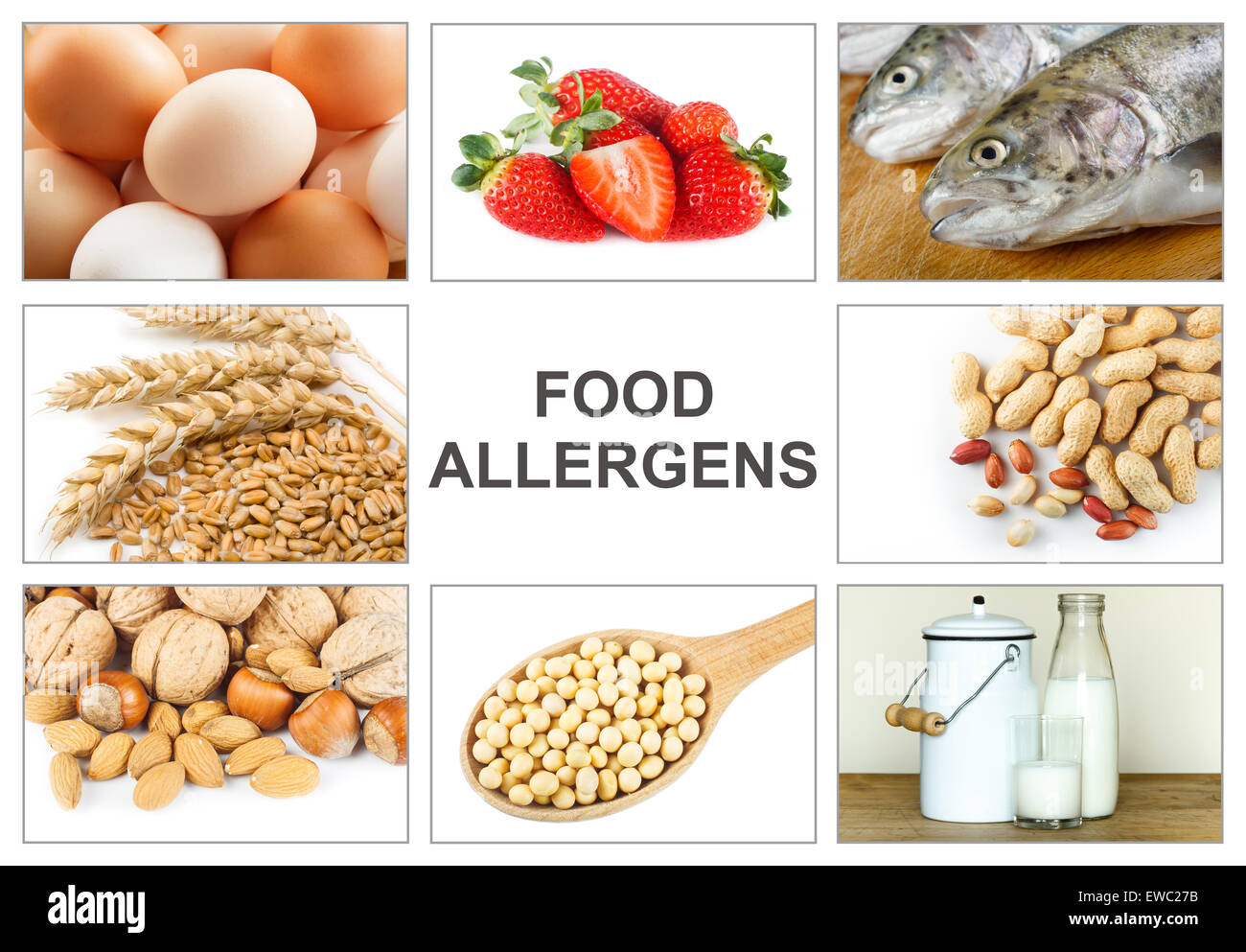 Allergy food concept food allergens as eggs milk fruit for Fish allergy home remedy