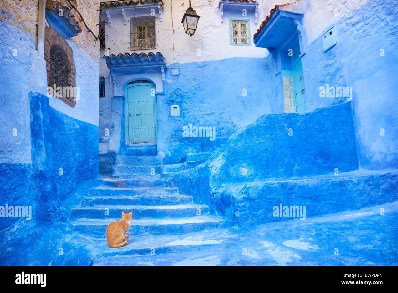 Shades Of Blue Paint Chefchaouen Chaouen Is Noted For Its Buildings In Shades Of Blue