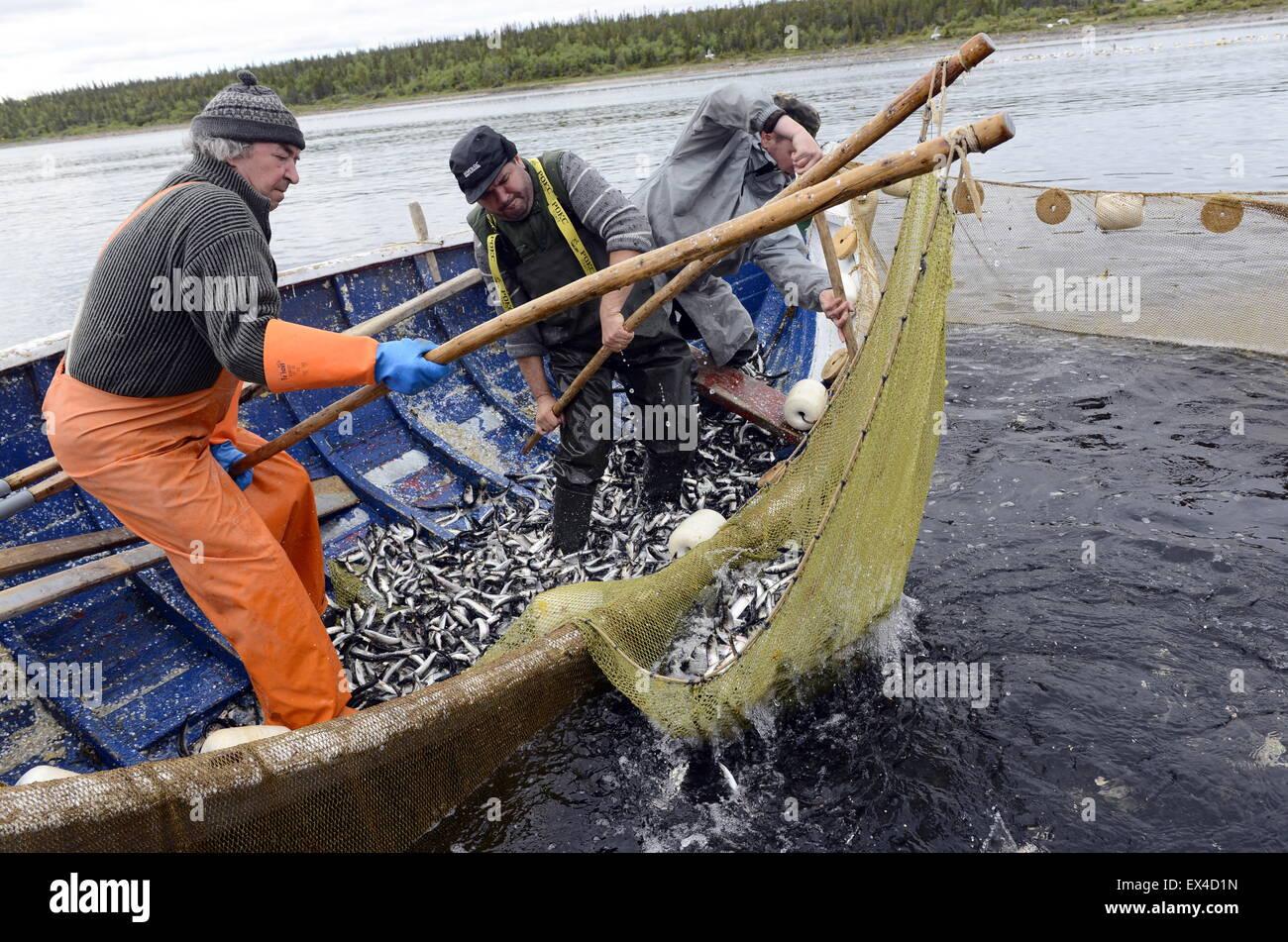Murmansk Region, Russia. 22nd June, 2015. Fishermen ...