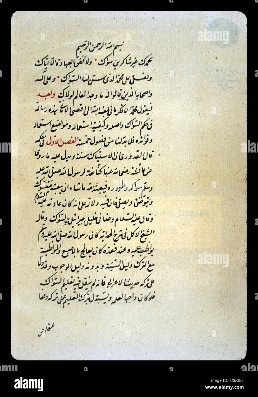 the opening of an arabic essay on the use of the toothbrush siwak stock photo the opening of an arabic essay on the use of the toothbrush siwak written by mu ammad al qkirm n in the mid 18th century no other copy is
