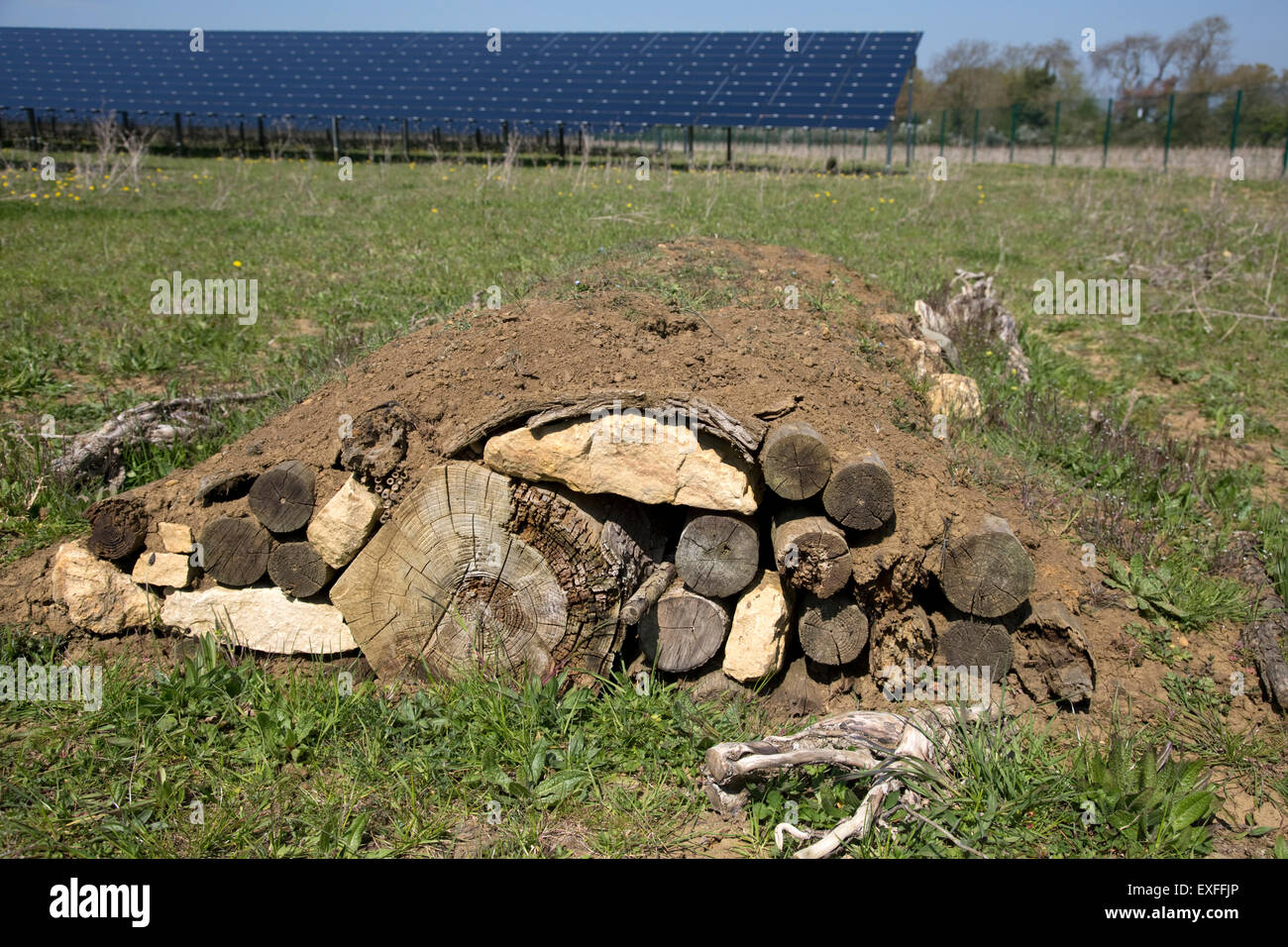 Hibernaculum Or Artificial Mound Of Logs And Soil To