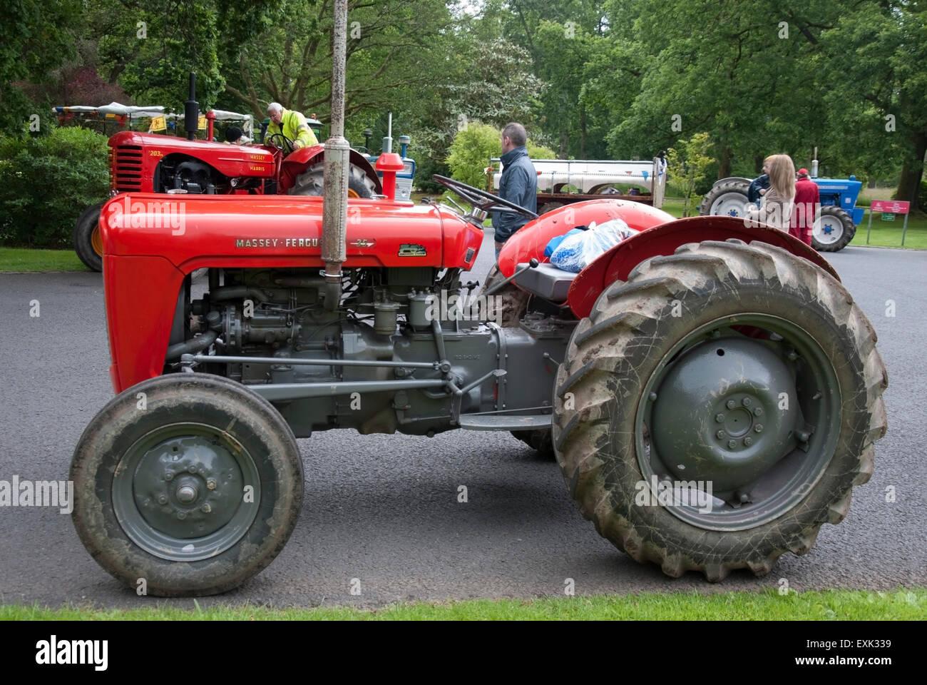 1961 red massey ferguson 35 model farm tractor stock photo. Black Bedroom Furniture Sets. Home Design Ideas