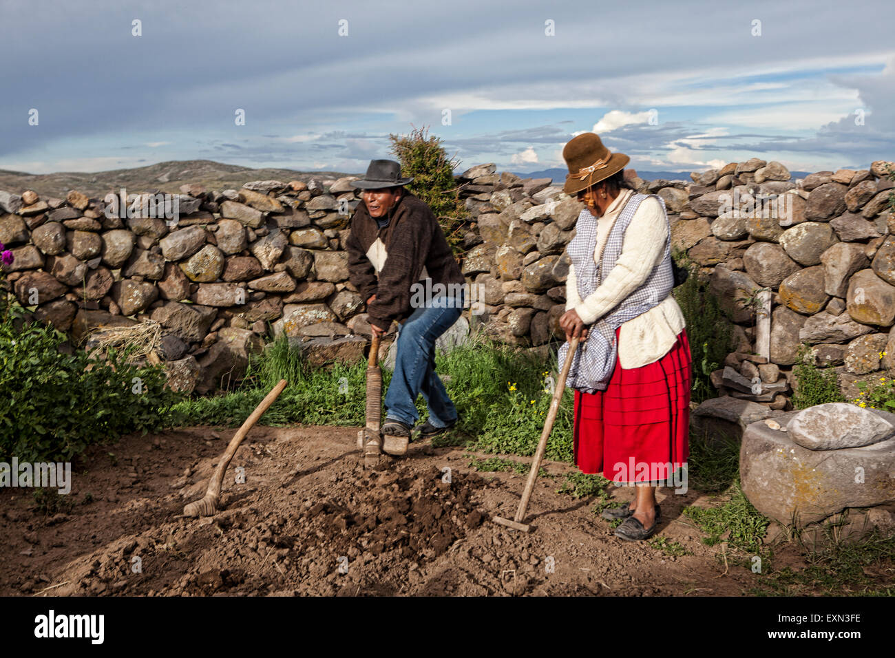 Older Traditional Peruvian Farmers Demonstrate How To Plant Potatoes In The  Andean Soil