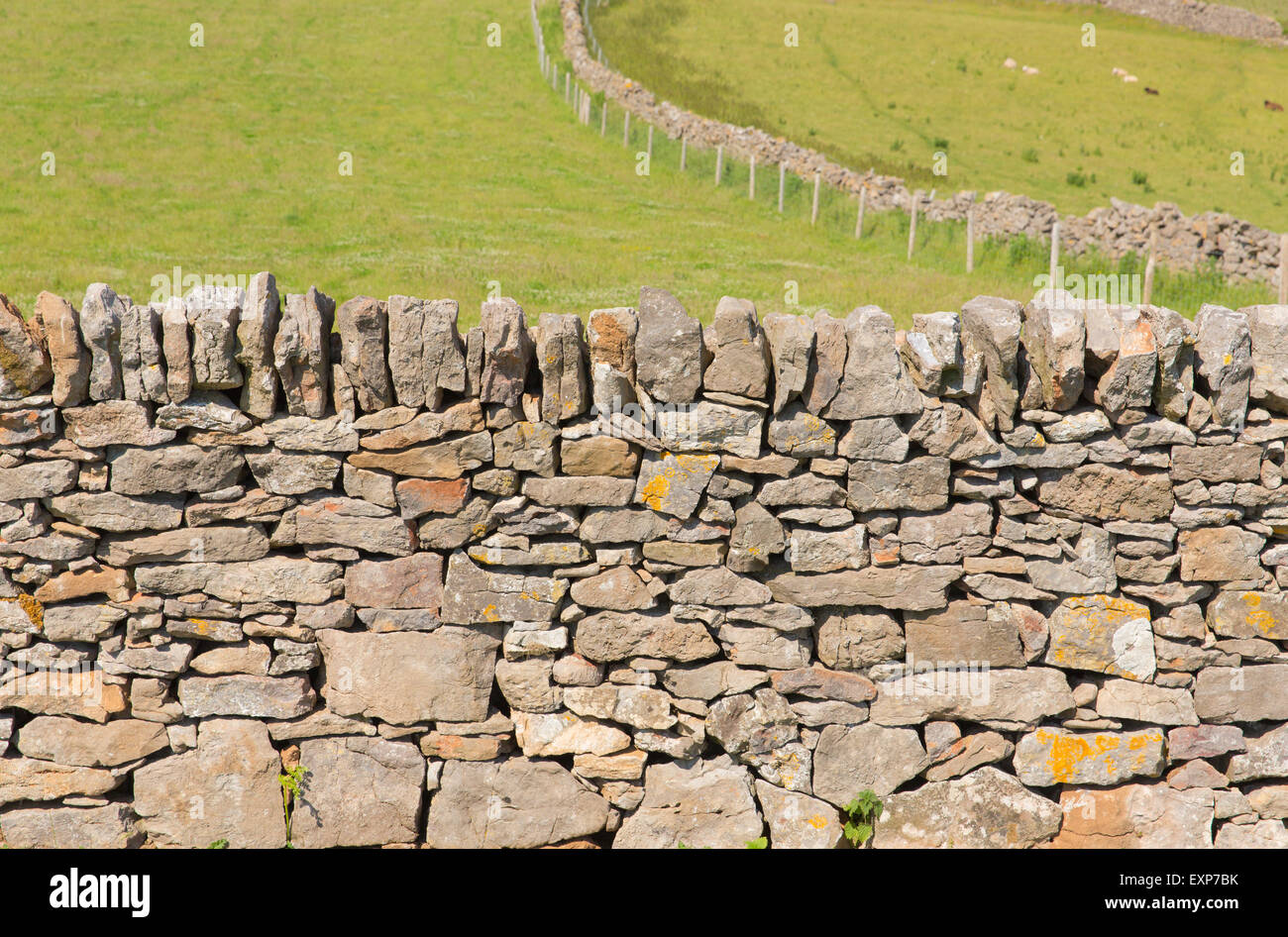 Traditional Construction dry stone wall traditional construction the gower peninsula south