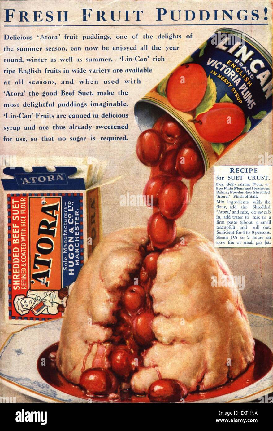 Atora vegetarian suet recipes for humans