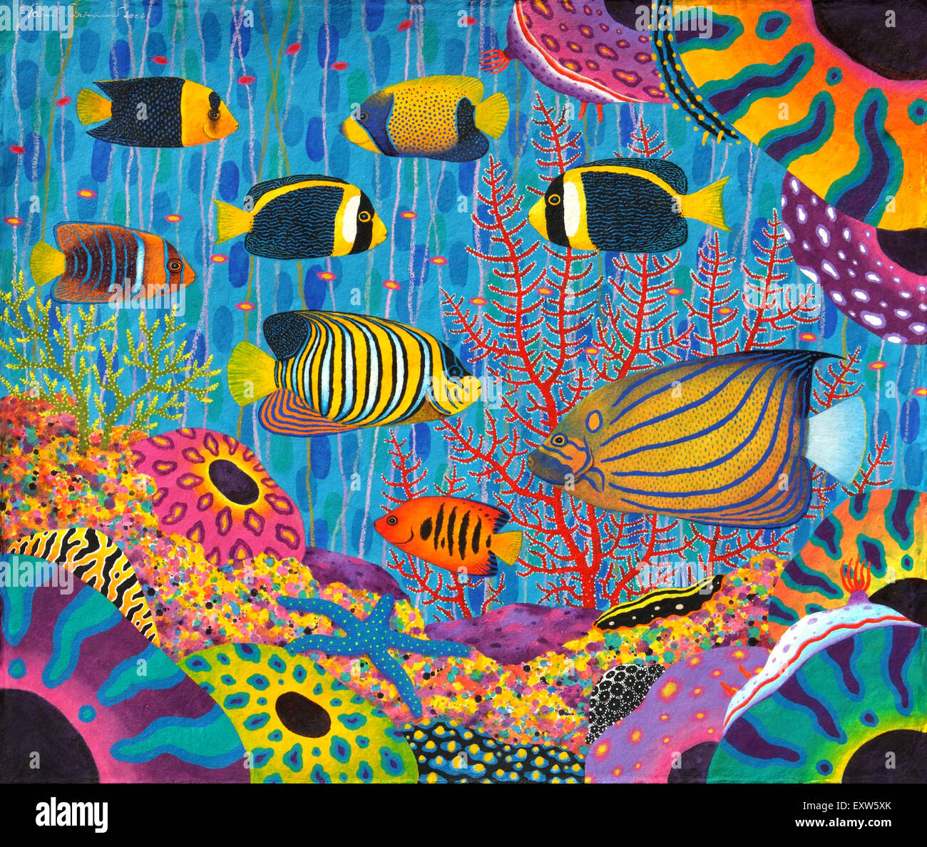 Angelfish Family in coral reef Colorful of marine lifes ...