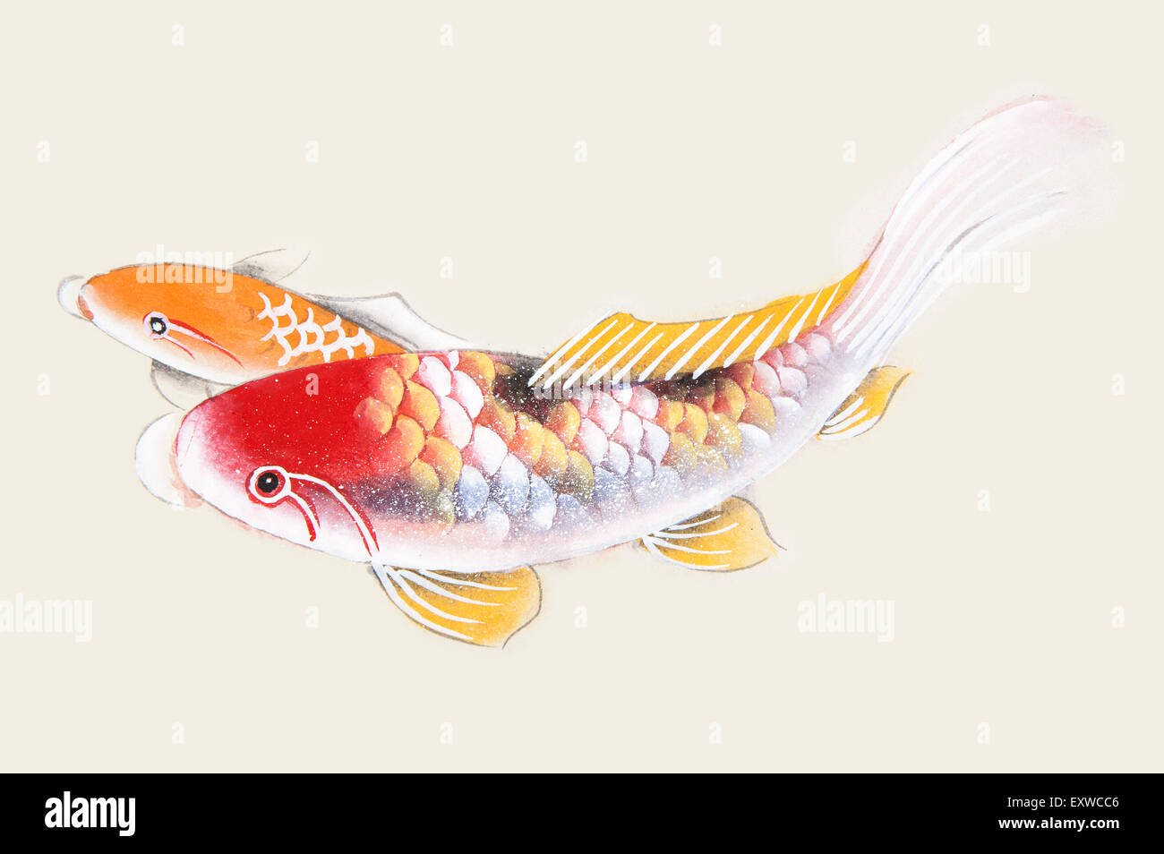 Traditional chinese painting koi carp fish stock photo for Chinese koi fish painting