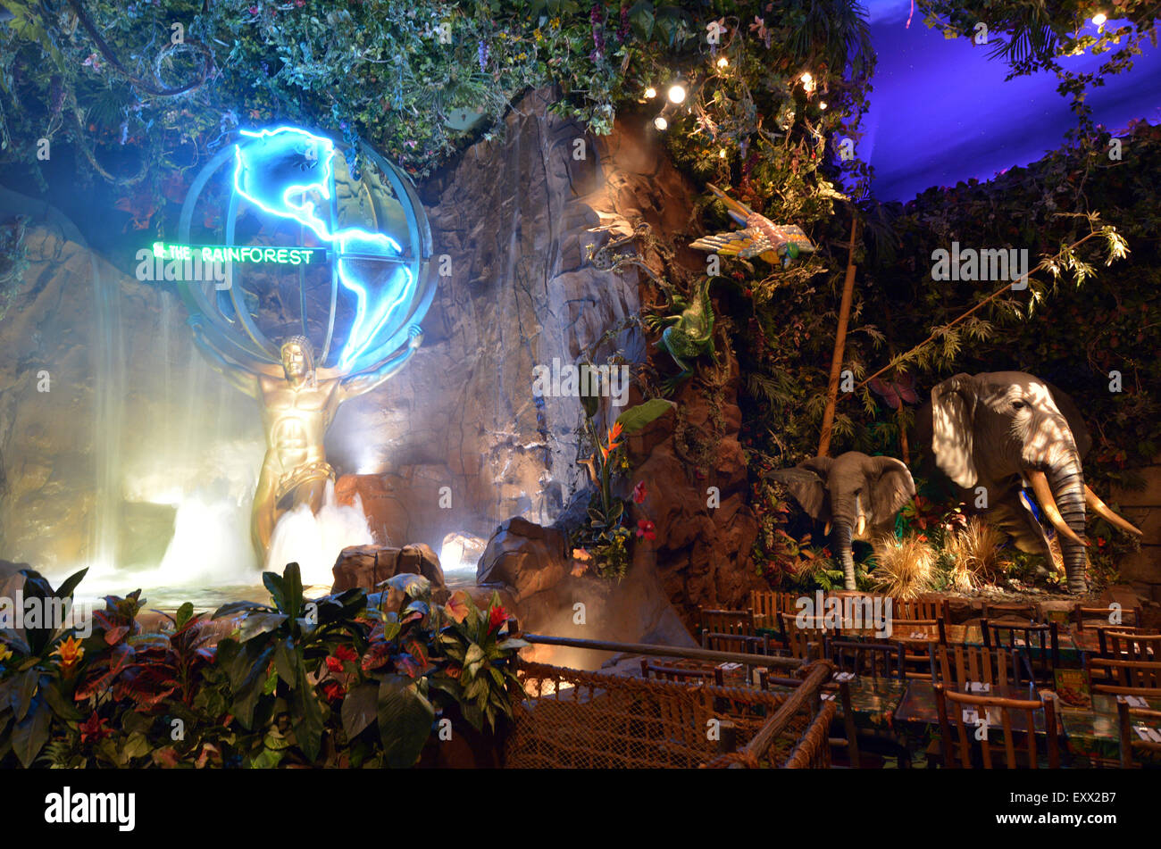 san francisco usa may 21 2015rainforest cafe in san franciscocaits a themed restaurant chain owned by landrys inc each restaurant is designed to - Tropical Cafe 2015