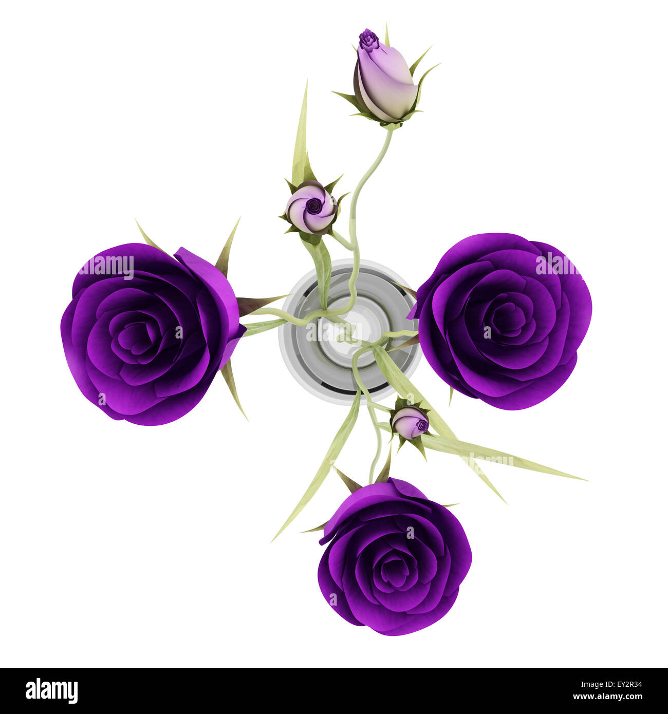 Top view of purple eustoma flowers in glass vase isolated on white top view of purple eustoma flowers in glass vase isolated on white background reviewsmspy