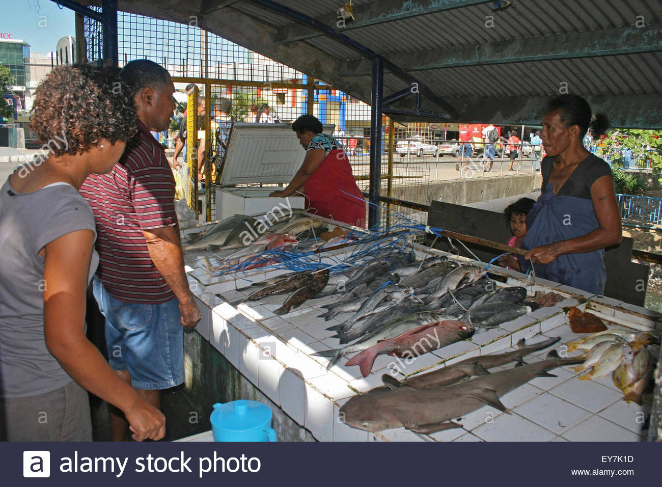 fiji south pacific island suva fish market stock photo