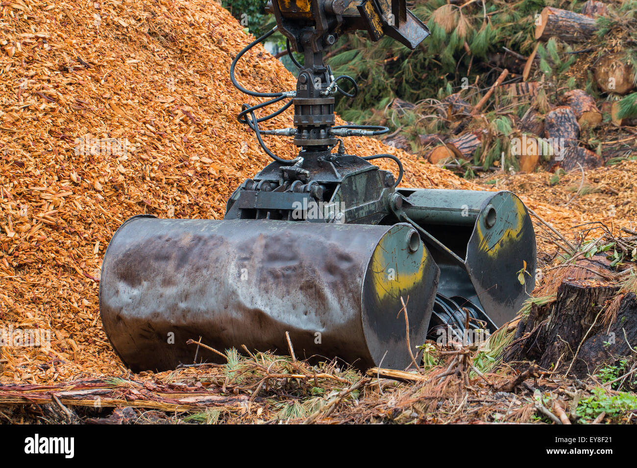 Hydraulic Loading Arms : Loading hydraulic clamshell grab bucket attached onto an