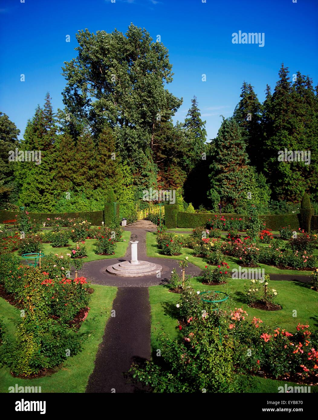 Irish National Botanic Gardens, Dublin, Co Dublin, Ireland; Rose Garden