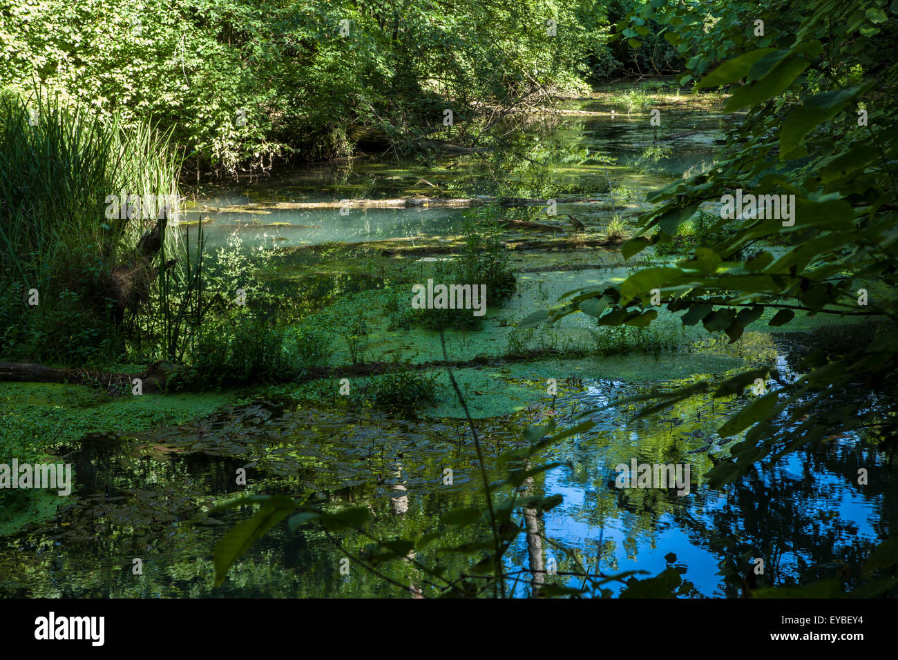 A huge Karst spring near Panega, Balkans, Eastern Europe Stock Photo, Royalty...