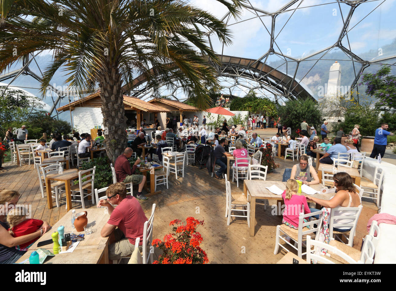 Flora Mediterranean Cafe Menu