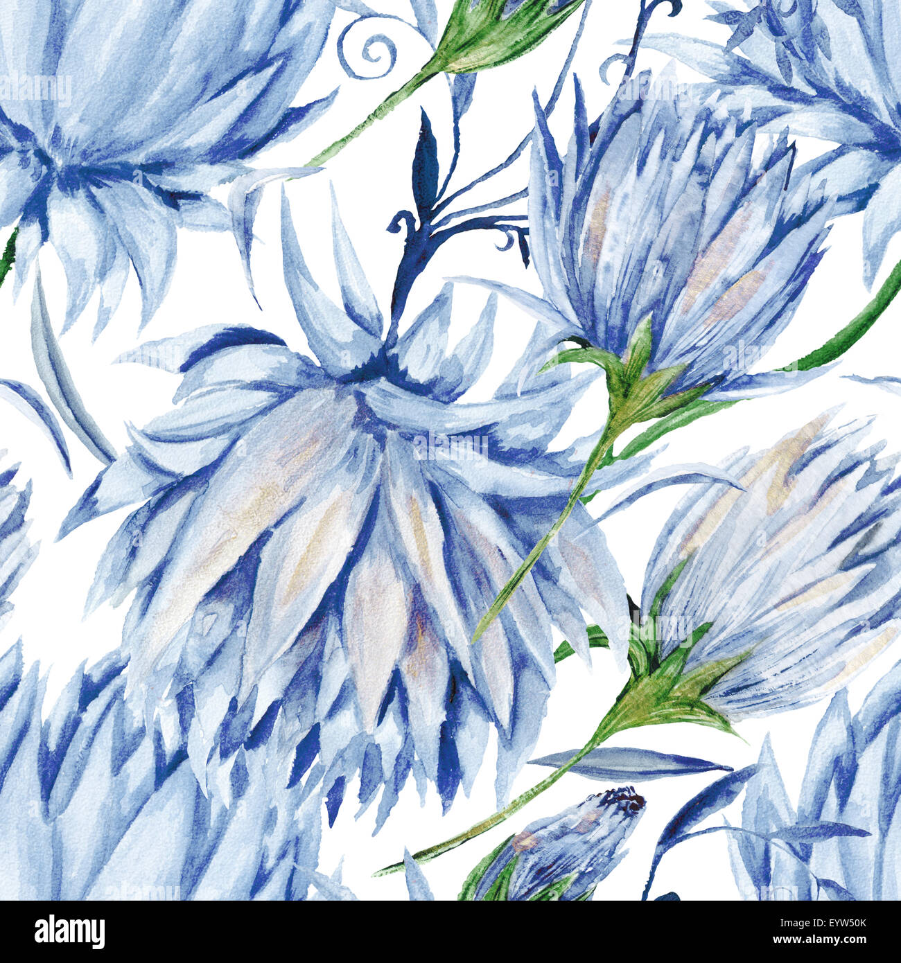 Seamless watercolor background with blue flowers isolated on white seamless watercolor background with blue flowers isolated on white background soft and tender for dhlflorist Gallery
