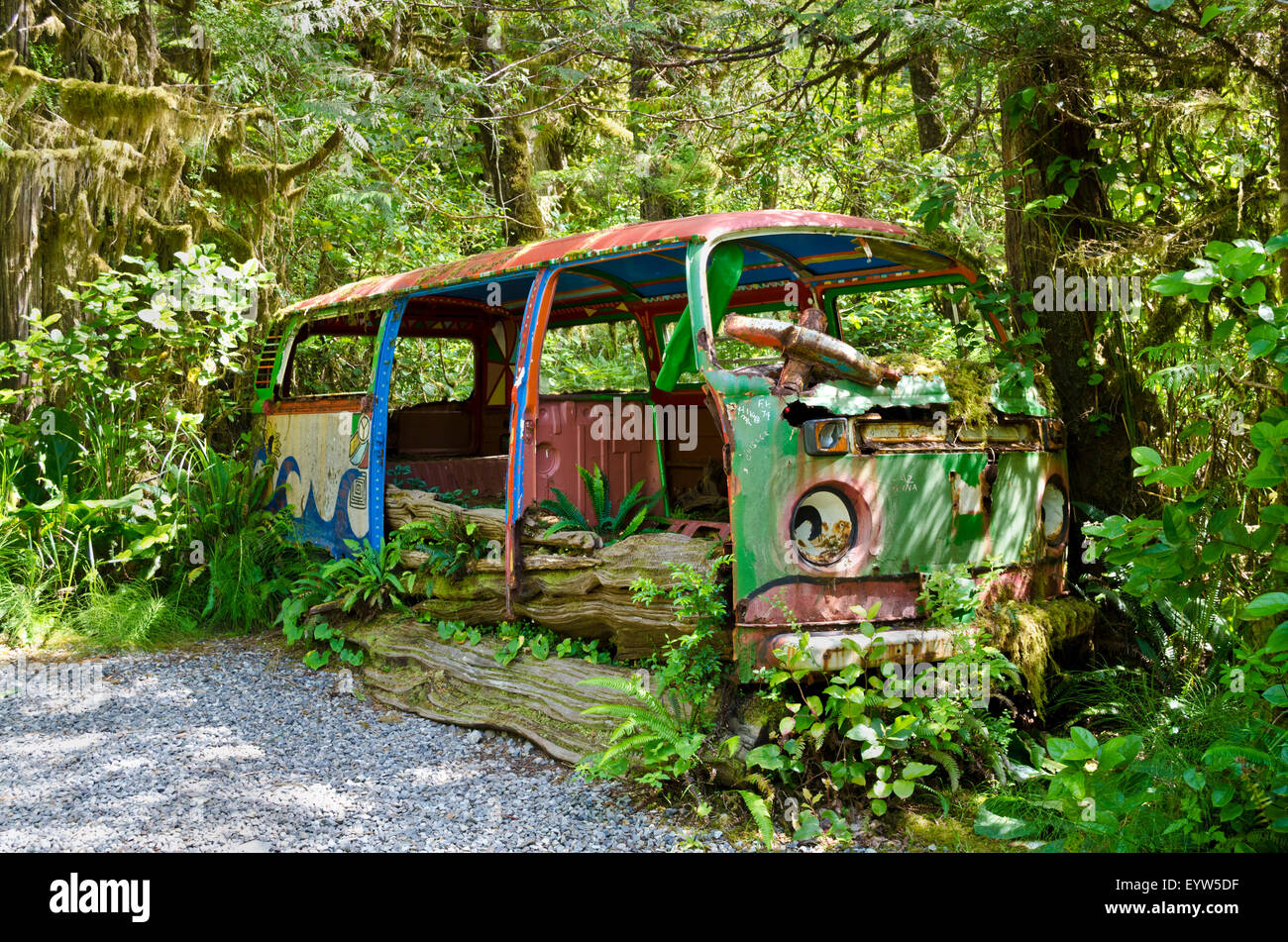 dilapidated volkswagen bus painted in bright hippie colours being overgrown by plants at the tofino botanical garden