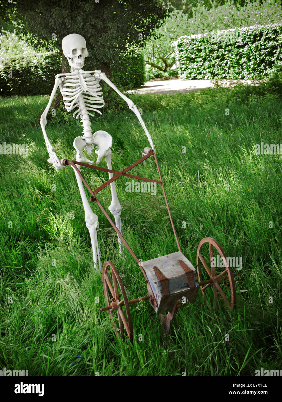 Quirky sculpture of skeleton mowing grass in an overgrown for Long grass in garden