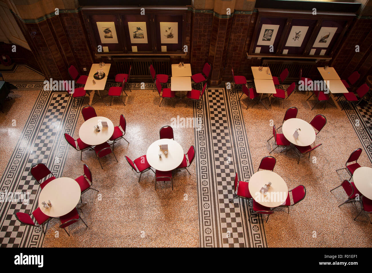Liverpool University Victoria Building Gallery And Museum Cafe England UK