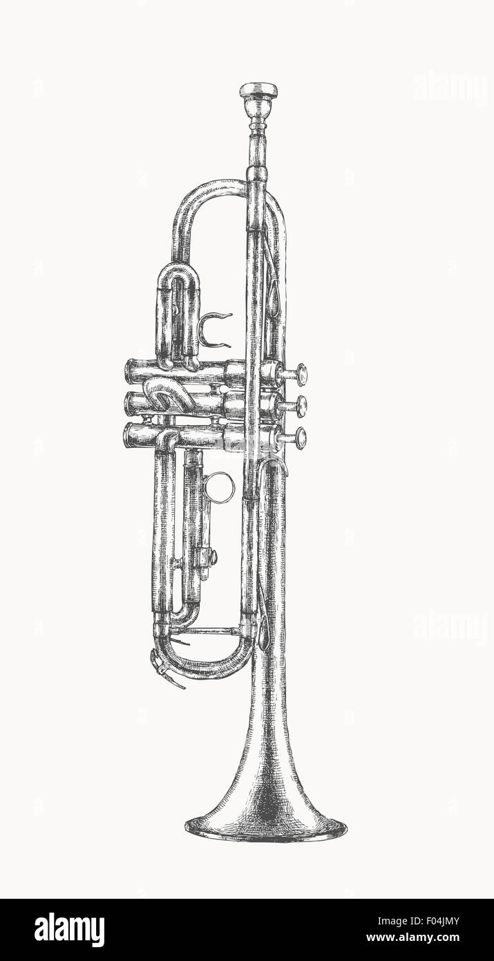 Uncategorized Drawing Of A Trumpet trumpet drawing stock photo royalty free image 86154347 alamy drawing