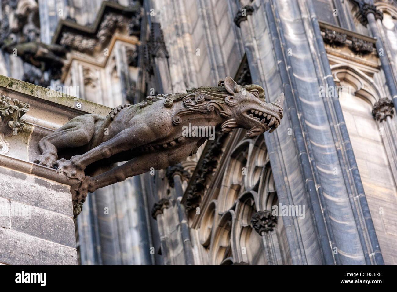 Cologne Cathedral Gargoyle Kolner Dom