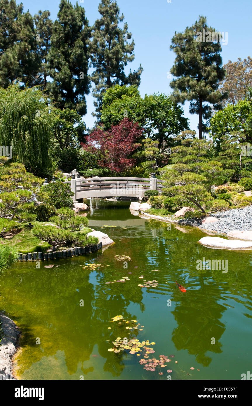 The Earl Burns Miller Japanese Garden At The Campus Of California Stock Photo Royalty Free