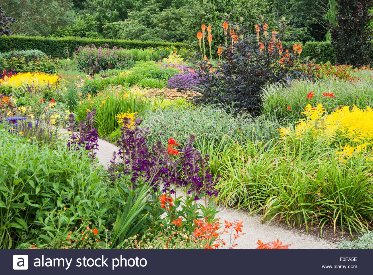 the square garden at rhs rosemoor is full of late summer colour stock photo royalty free image. Black Bedroom Furniture Sets. Home Design Ideas
