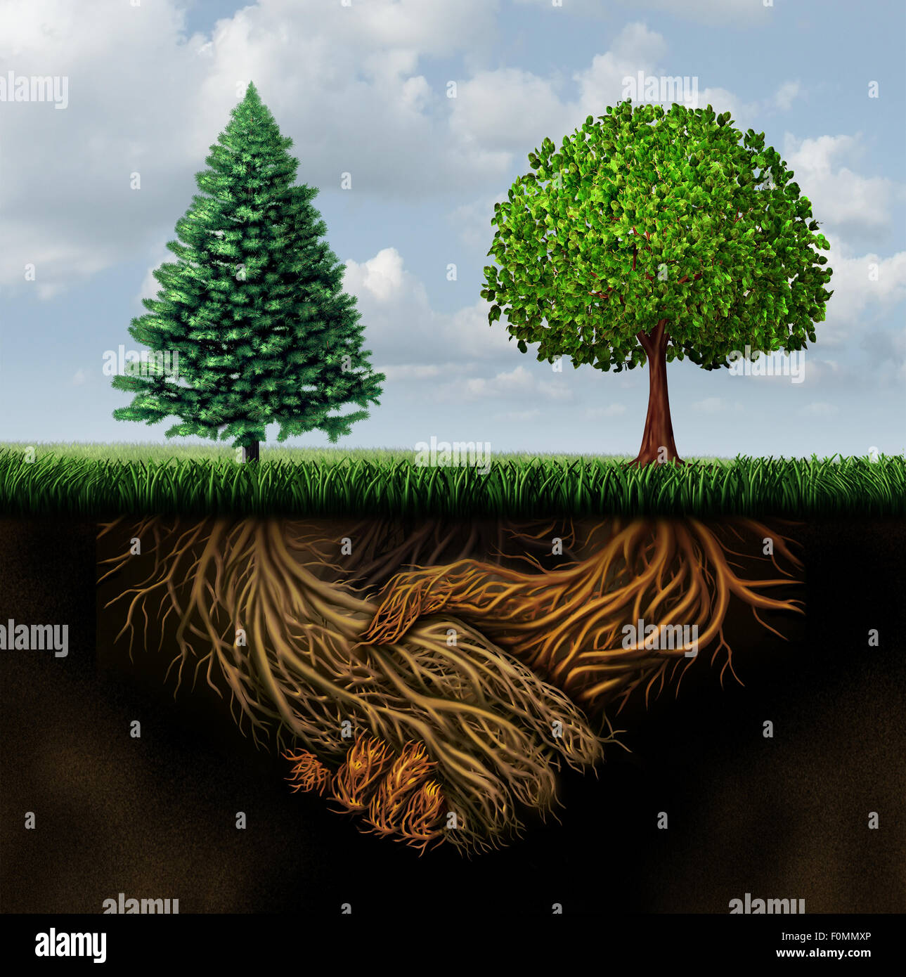 Global agreement shaking hands as two different trees from ...