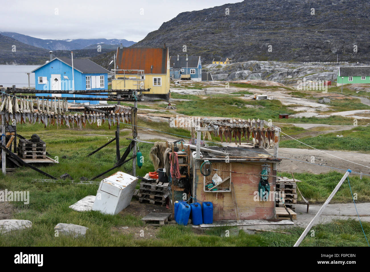Colorful houses and fish drying racks rodebay oqatsut for Racks fish house