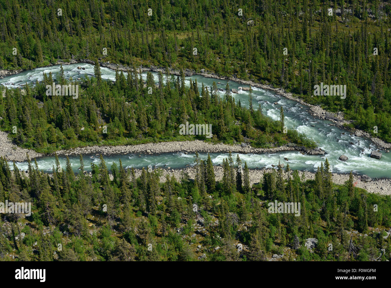 Aerial view of river flowing through taiga boreal forest, Sjaunja ...