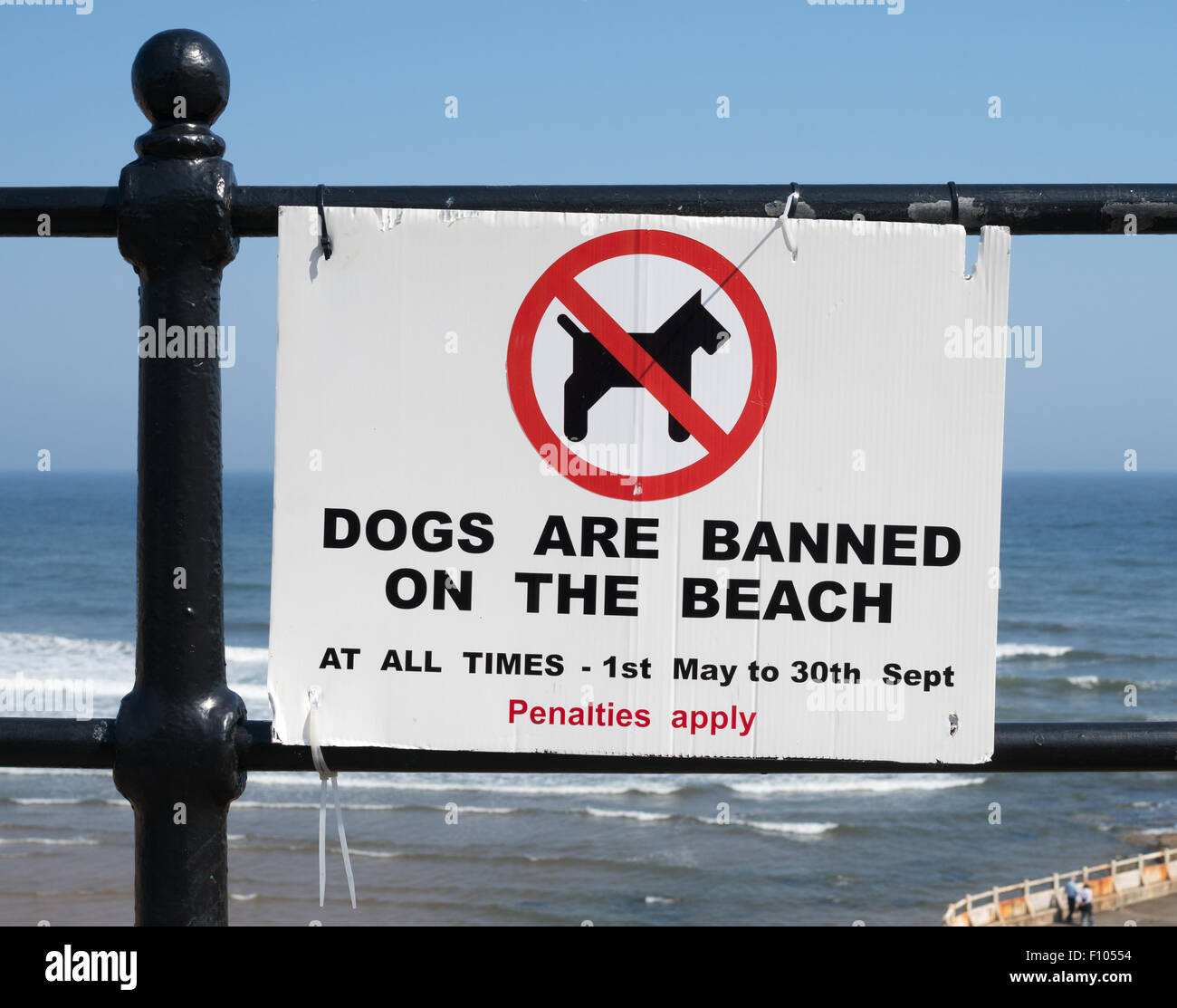 Banned Dogs Uk Pictures