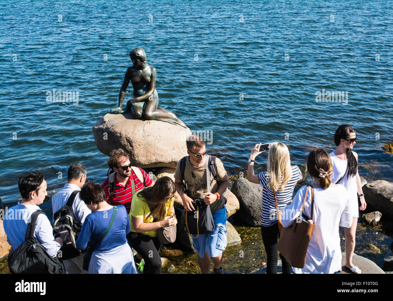 tourists scramble around the little mermaid statue copenhagen