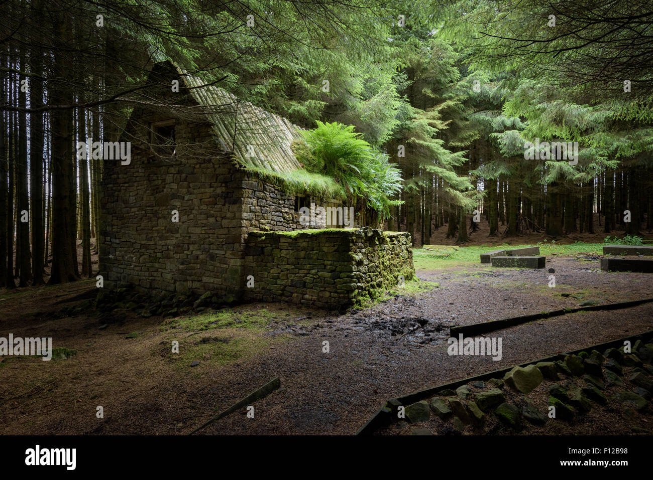 Stone Cottage In The Woods House Stock Photos