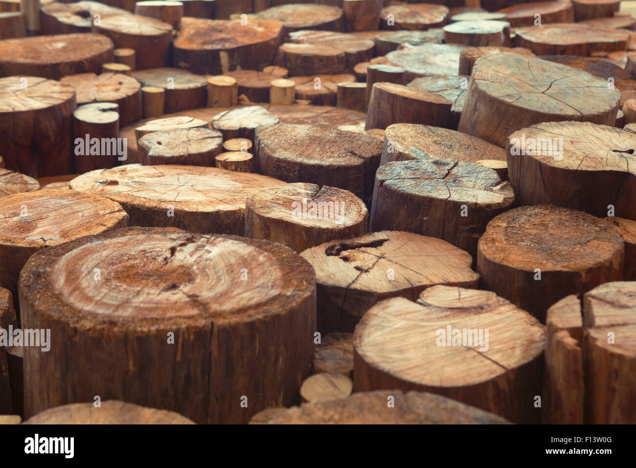 wood birch liner ring rings wooden teak stock profile with wedding in maple incorruptible d copy simply