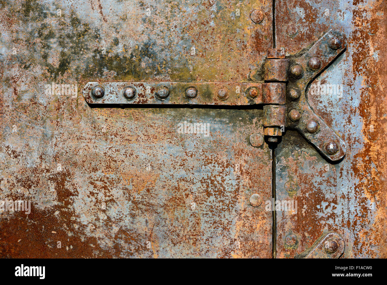 Rusty Metal Door backgrounds and textures: rusty metal door surface with riveted