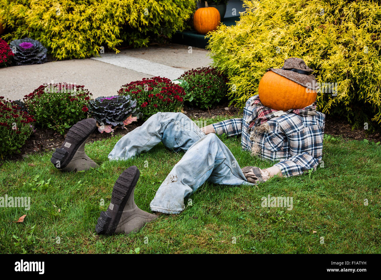 Halloween decoration of a pumpkin head man sitting in the grass in ...