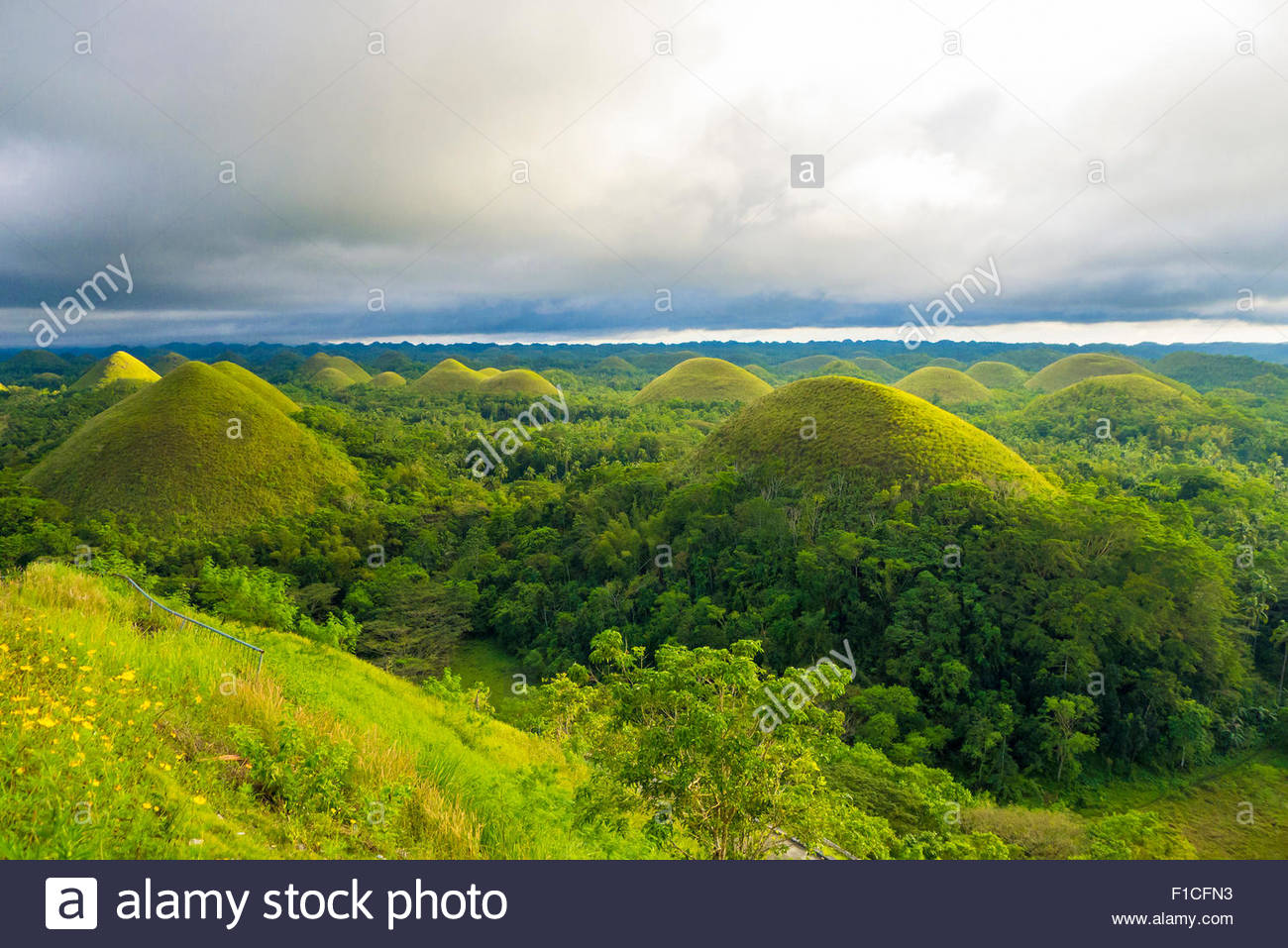 Chocolate Hills, Carmen, Bohol, Central Visayas, Philippines Stock ...