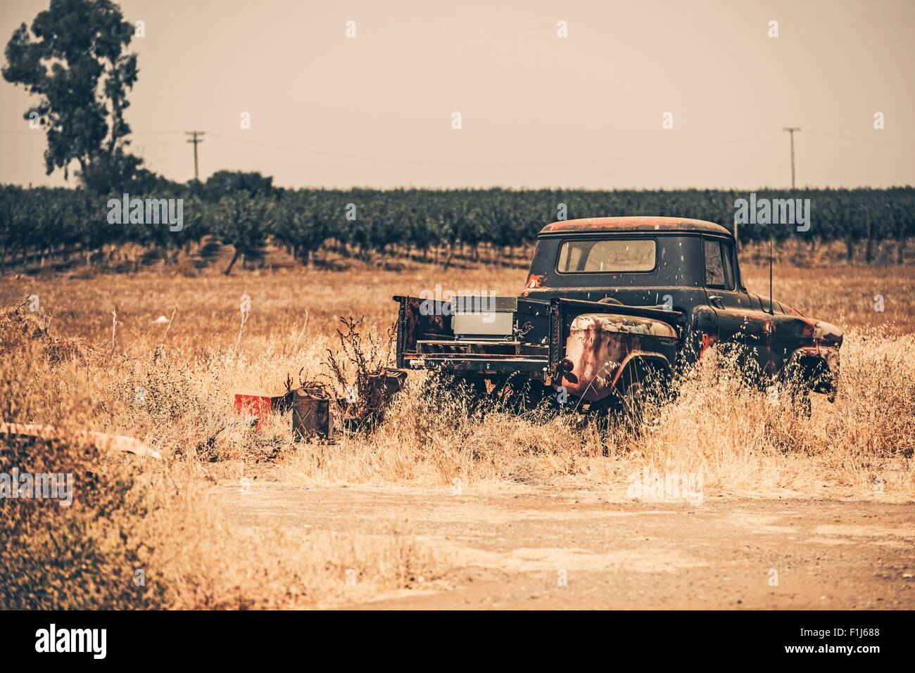 Junk Aged Pickup on the Dry California Meadow. History of American ...