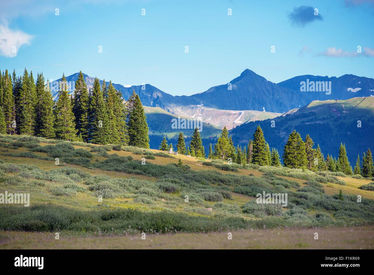 Colorado Rocky Mountains Summer Landscape Taken Near Vail Pass - United states mountains