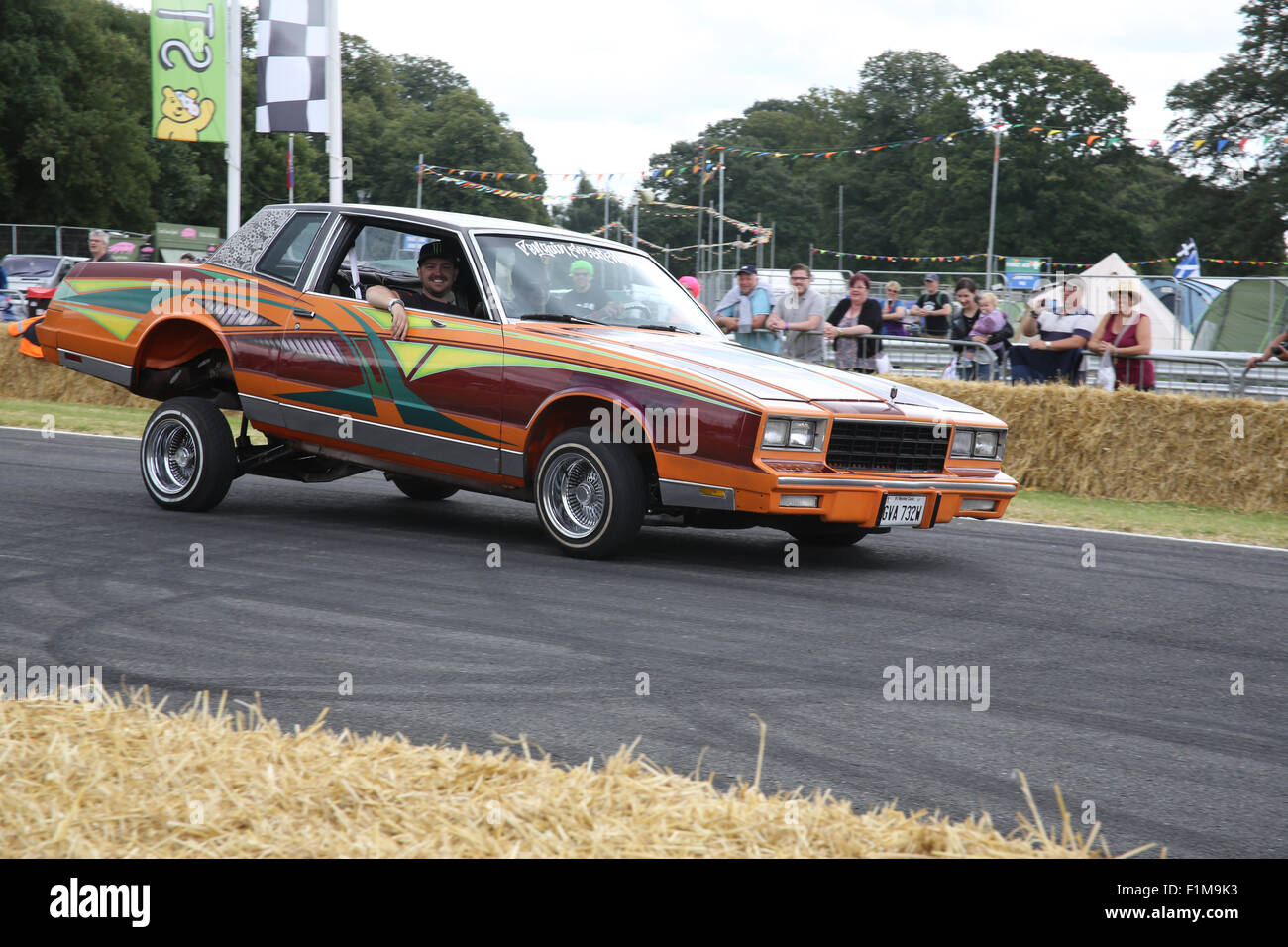 1981 Chevrolet Monte Carlo Street Car Car Fest North 2015 Stock